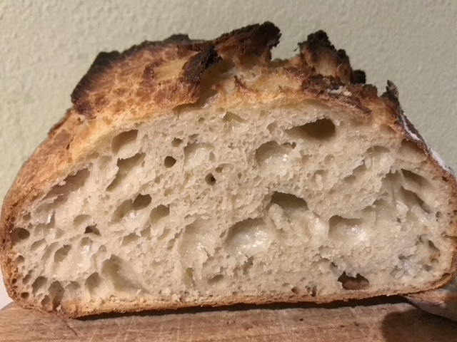 Recipe: No Knead Bread with cold fermentation (Dutch Oven) 2 of 2